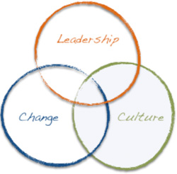 culture-change-leadership