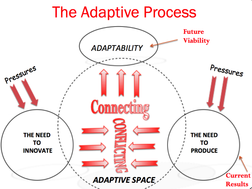 Enabling adaptive space | More Beyond